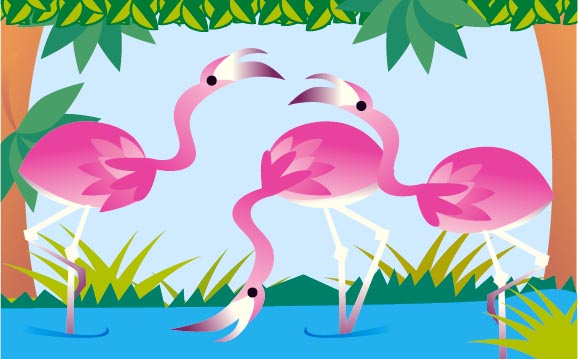 Pink flamingos standing in water.