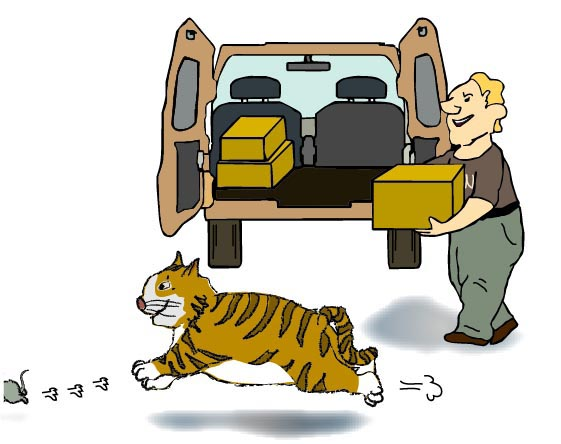 A fat cat is running after a rat passing by a van. A man is loading a box to the van.