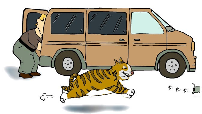 A cat is running after a rat. They are passing by a van. The windows of the van are tanned.