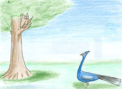 A peacock talking to an owl in a tree.