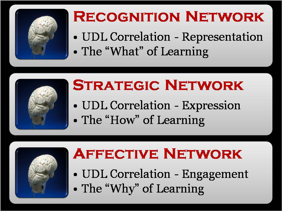 The brain recognizes information via three networks.