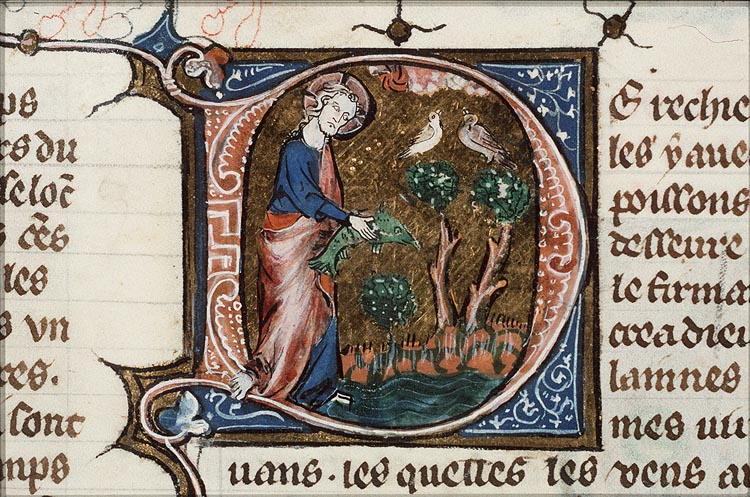 picture of illuminated manuscript